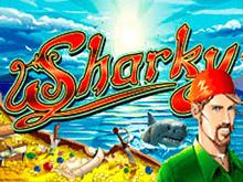 Sharky в клубе Вулкан Делюкс