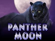 В Вулкан Ставке Panther Moon