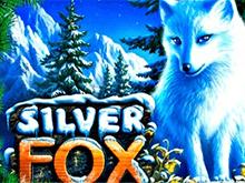 Автомат Silver Fox в клубе Вулкан